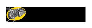 Logo_Energreen_Germany